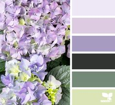 Color Spring - http://design-seeds.com/home/entry/color-spring4
