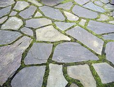 Flagstone patio neatly fit with moss in between.  A great look for shade.  michaelmuro.com