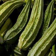 Pipengaille is a very well known vegetable in Mauritius.    This vegetable can be prepared into various dishes for example:    Pipengaille Curry  Pipengaille...