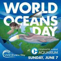 Celebrate World Oceans Day with us! The first 100 people that come to Clearwater Marine Aquarium on Sunday, June 7 will receive a special CMA reusable bag - along with the promise to not take any disposable plastic bags for one year.