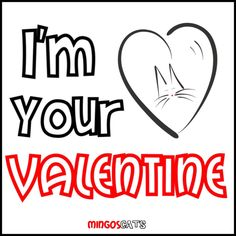 I´m Your Valentine #cats #gatos #gatetes #catslovers #catlover #love #amor #meow #miau