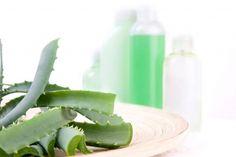 Celery, Vegetables, Ethnic Recipes, Food, Ants, Essen, Vegetable Recipes, Meals, Yemek