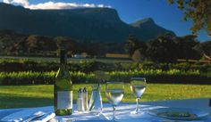 Constantia, South African Wine Country - The Best Vacation Destinations You've Never Heard Of Christmas Holiday Destinations, Farm Date, South African Wine, Hotel Specials, Best Vacation Destinations, Vacation Ideas, Cape Town South Africa, Table Mountain, Africa Travel