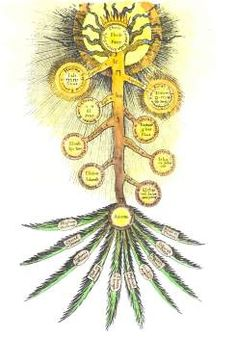 Tree of the Sephirot Alchemical And Hermetic Emblems 2; Images in Album: 146; Category: Alchemical Pictures; From Adolph Christoph Bentz Philosophische Sc and others...