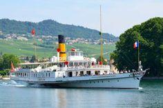 Paddle Boat, Boats, Geneva, Swiss Guard, Ships, Boat