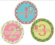 Baby Monthly Onesie Stickers Girls Owls by watchmegrowstickers, $9.99