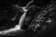 flow 2 - Pinned by Mak Khalaf small creek running over cascades pf rocks Black and White white500pxB&WLandscapebachbeautifulblackcascadecreekfliessenflowforestkaskadelightsmoosmossrocksshaddowssoftwasserwater by westlightart