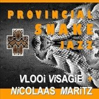 Provincial Snake Jazz by Vlooi Visagie & D.V.P. on SoundCloud