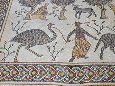 African and ostrich, Baptistry of Moses, Jordan. Byzantine Mosaics, Mosaic Floors, Roman Mosaics, Jerash, Rare Orchids, Jordans, Photo Galleries, African, Kids Rugs