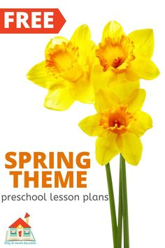 Homeschooling your preschooler has never been easier than with these free printable homeschool preschool lesson plans. Each week features a new theme. Free Lesson Plans, Preschool Lesson Plans, Preschool At Home, Free Preschool, Homeschool Preschool Curriculum, Homeschool Worksheets, Preschool Printables, Homeschooling, Free Printables