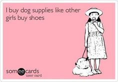 As a pet moms and dad, you'll find yourself wishing to ruin your canine and give… – Dog Supplies I Love Dogs, Puppy Love, Cute Dogs, Big Dogs, Dog Quotes, Animal Quotes, Dog Sayings, Funny Quotes, Crazy Dog Lady