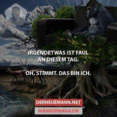 Faul #derneuemann #humor #lustig #spaß