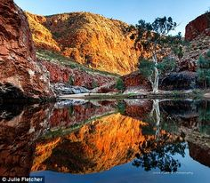 Photographer Julie Fletcher takes magical pictures of Australia Alice Springs Australia, Beautiful World, Beautiful Places, Amazing Places, Australia Landscape, Magical Pictures, Australian Photography, Earth Photos, Nature Images