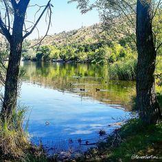 #eymir #lake #metu #odtü #ankara #Turkey #birds #forest #recreation #doga #plants #nature_perfection #naturelovers #zamanidurdur #turkobjektif #objektifimden #photographer #photooftheday #gununfotografi #explore #explorenature #nature #reflection #water #sky #tree #aniyakala by leventertunc