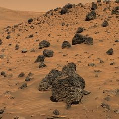 Mars has rocks on its surface unlike any we have ever seen before on Earth!!! Mars has this rock for instance, which is assumed to be made from Martian Volcanoes (due to the pitting from gas escaping to the rock surfaces)