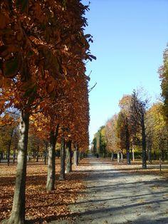 Sidewalk, Country Roads, Vienna, Walkway, Walkways