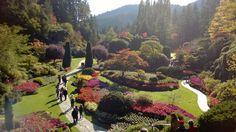 Butchart Gardens, Victoria Canada ... Oct 12