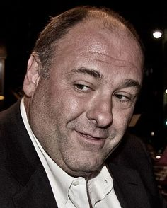 """Actor James Gandolfini died from a heart attack at age 51 Wednesday while in Italy, according to his managers and HBO. HBO broadcast """"The Sopranos,"""" in which Gandolfini starred as Tony Soprano. Tony Soprano, John Travolta, Detective, Die Sopranos, I See Stars, Actor James, Blockbuster Movies, Hbo Series, Drama Series"""