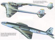 Arado E 555-10 y E 555-11