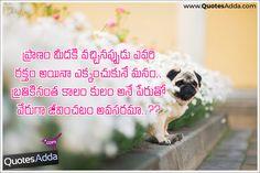 kamma-kaapu-yadava-reddy-sc-caste-quotes-telugu-images-brahmana