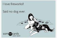 I love fireworks.....said no dog ever.