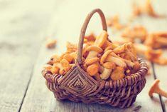 Die Saison für Pilze vión Sommer bis Herbst. Hier sind Steinpilz, Champignon und Co.. Ein kleiner Pilzführer zum Bestimmen.