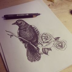 Crow Drawing Tattoo