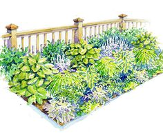 Ideas garden beds borders shade plants - All About Garden Theme, Garden Illustration, Landscape Plans, Shade Garden, Shade Perennials, Moon Garden, Landscaping With Rocks, Garden Borders, Garden Planning