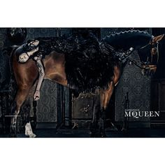 alexander mcqueen 2014 fall winter campaign2 Edie Campbell Gets Equestrian for Alexander McQueens Fall 2014 Campaign