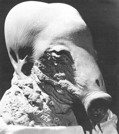 Second Stage Guild Navigator (Unused design from David Lynch's Dune, 1984)