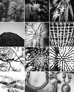 Hit me up @artbyashish     #BlackAndWhite #Monochrome #bnw  #photogram #fotografia #Wanderlust #TravelPorn #TravelFun #TravelLife #TravelBlog #Travelgram #Travellers #Indianphotographers #fotoartegram #VscoPhile #Instagraphy #iphonography #iphonegraphy #vscocamera #Vsco #Snapseed #photoporn #vscogrid #black #Instagraphy #photographie #vscolove #vscolife #VSCOGrid #vscoblackandwhite AshishSinghPhotography