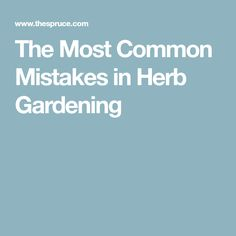 The Most Common Mistakes in Herb Gardening