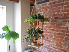 Make a Hanging Planter with Copper Piping Accents >> http://www.hgtv.com/shows/danmade/how-tos/how-to-make-a-vertical-copper-planter?soc=pinterest
