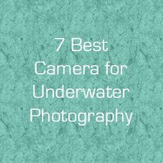 7 Best Camera for Underwater Photography