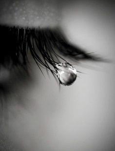 Les âmes tendres, profondes et sensibles, ont du mal à gérer leurs passions et leurs émotions. Elles les vivent à fond, sincèrement, passionnément et profondément. A ce titre, elles sont des âmes nobles, dignes d'amour et d'affection… V. H. SCORP