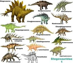 Prehistoric Wildlife, Prehistoric World, Prehistoric Creatures, Mythological Creatures, Dinosaur Fossils, Dinosaur Art, Reptiles, Especie Animal, Jurassic Park World