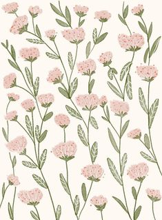 Pastel pink blooms pattern by Chotnelle. Pretty, flower pattern design ideas, and inspiration. Love this soft, floral print. Art And Illustration, Flowers Illustration, Pattern Illustration, Art Illustrations, Flower Pattern Design, Pastel Pattern, Surface Pattern Design, Flower Patterns, Doodle Pattern