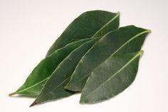 Devostock World and Asian spices Health Remedies, Home Remedies, Natural Remedies, Ayurveda, Laurel Burch, Herbal Tea, Herbal Medicine, Healthy Tips, Feng Shui