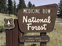 Medicine Bow National Forest Campgrounds
