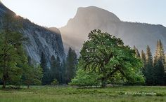 Yosemite Spring Sunrise by Photography by Vidya