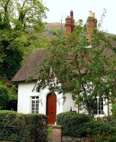 White House in the trees with a red door....lovely