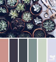 succulent tones   design seeds   Bloglovin'