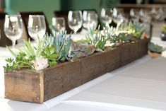 succulents in pallet troughs