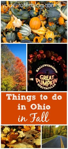 A list of fun things to do in the fall in Ohio!  Ohio has many great festivals as well as fall foliage!  All of these are family-friendly.