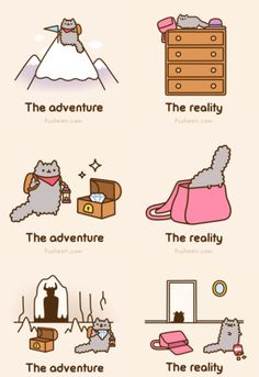 Kitty Adventures from Pusheen Starring Stormy! #cute#adorable