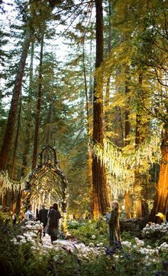 Over the top and magical enchanted forrest wedding | Sean Parker's Wedding Photos by Christian Oth