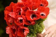 Rosso, il colore dell'amore  Bouquet di papaveri