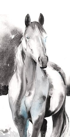 Pencil Art Print paard schilderen paard Art Print of aquarel paard Watercolor Horse, Watercolor Animals, Watercolor Paintings, Watercolor Print, Horse Drawings, Animal Drawings, Art Drawings, Painted Horses, Images D'art