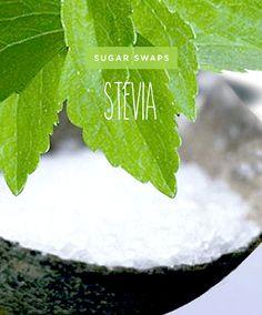 sugarswapped svetlana
