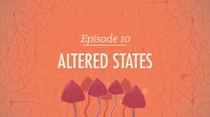 Altered States - Watch and Study Crash Course Psychology, Psychology Today, Teaching Displays, Evolutionary Psychology, Ernesto Che Guevara, Hank Green, Altered State Of Consciousness, Lucid Dreaming